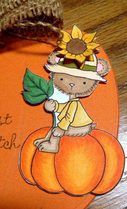 W&SS Pumpkin Close Up